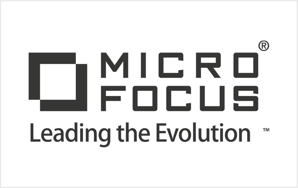 10_Micro focus